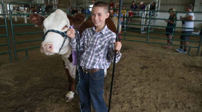 """Milk For Health Presents the """"WNY Youth In AG Bonanza"""" LIVE to You at Home, Streaming from WBBZ"""